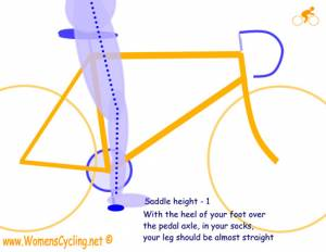 saddle correct height