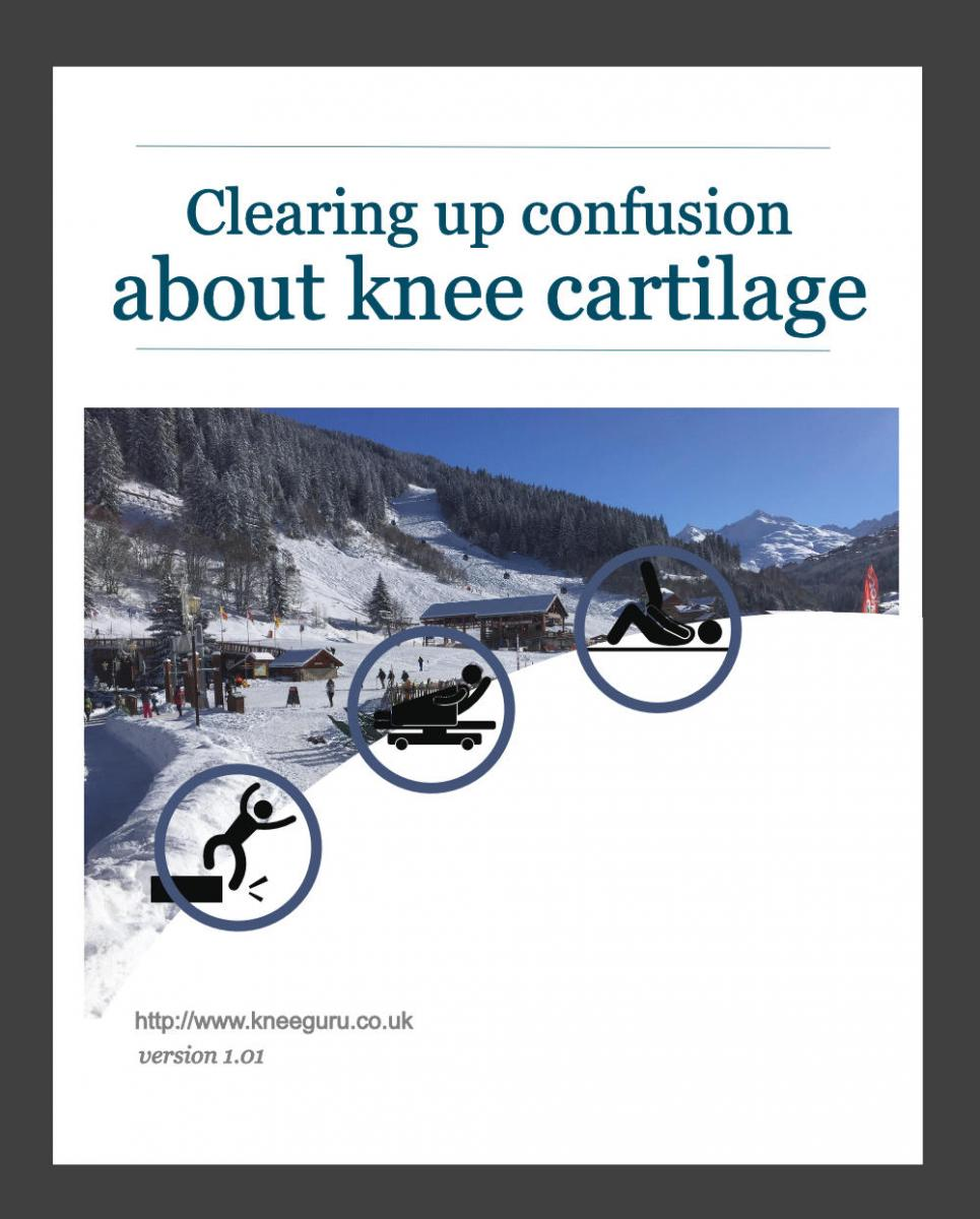 Clearing up confusion about knee cartilage